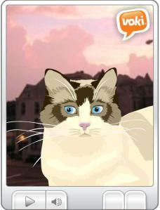 Voki Screenshot